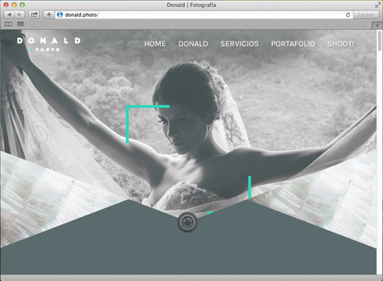 web-donald